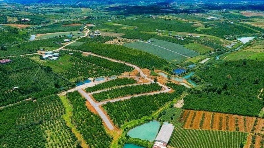 Danh sách 19 dự án đất nền tại Lâm Đồng bị khẩn trương rà soát pháp lý