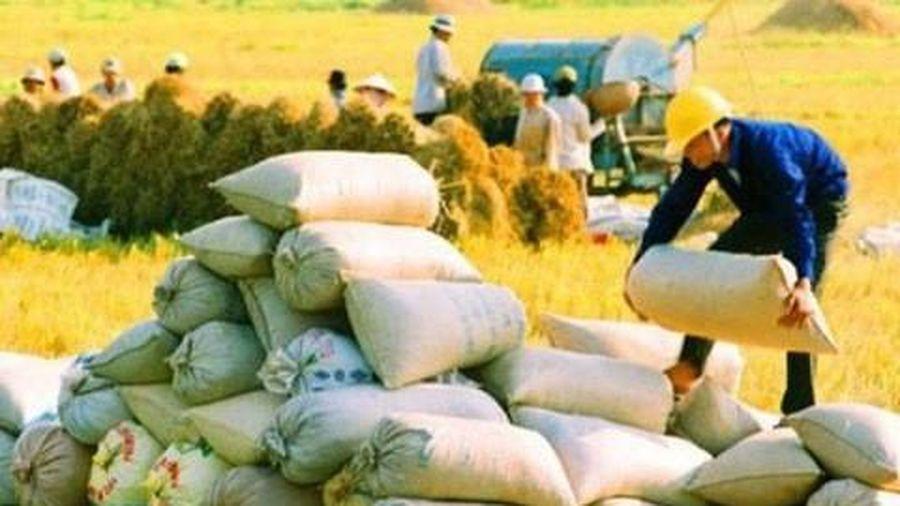 Xuất khẩu gạo 4 tháng thu về hơn 1 tỷ USD