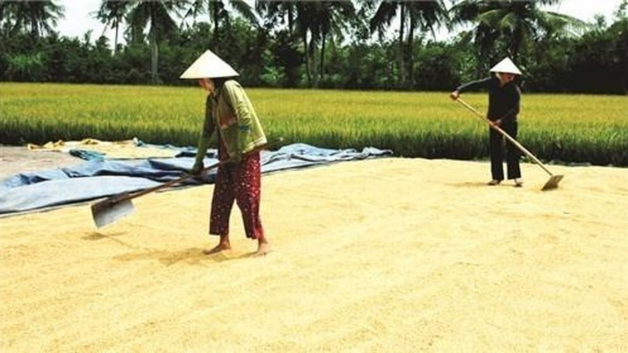 Việt Nam được cộng đồng quốc tế đánh giá là điểm sáng về giảm nghèo