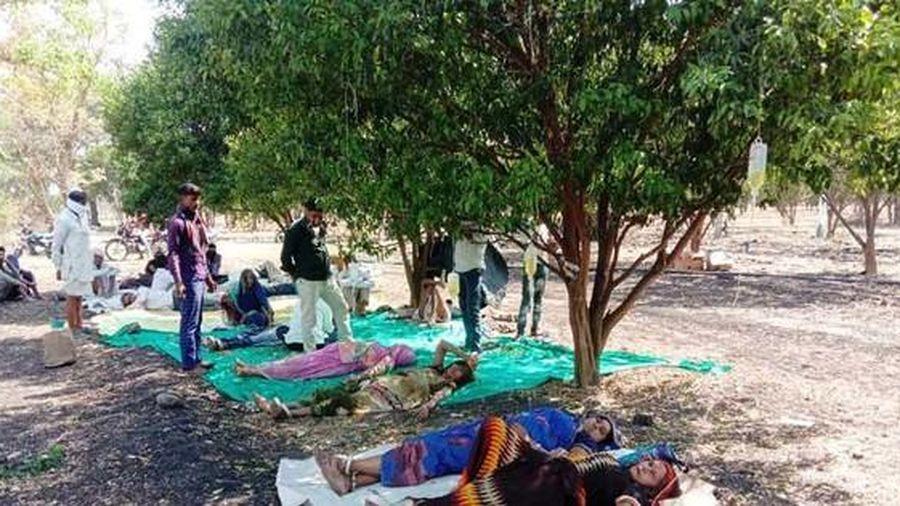 Ấn Độ trong 'sóng thần' COVID-19: Bệnh nhân nằm dưới tán cây truyền dịch