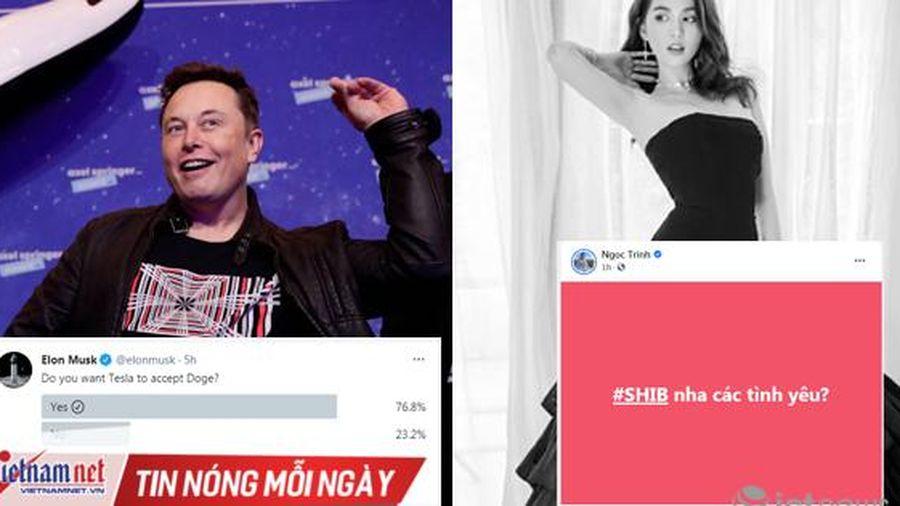Từ Elon Musk đến Ngọc Trinh: Cơn sốt tiền ảo đầy cạm bẫy