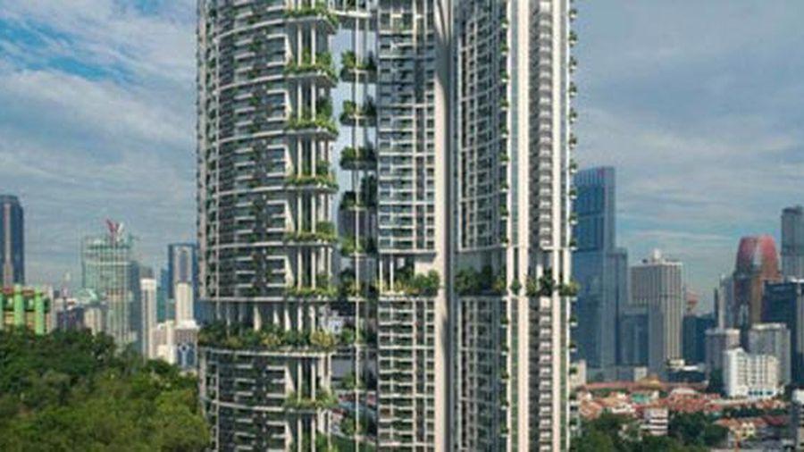 Nhìn ra thế giới: Singapore phát triển 'khu vườn thẳng đứng'