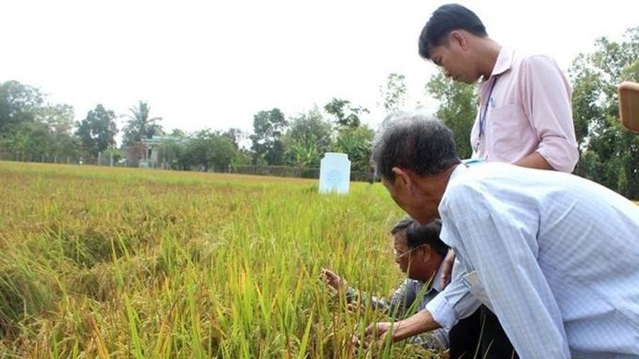 Giữ nhịp tăng trưởng cho ngành nông nghiệp