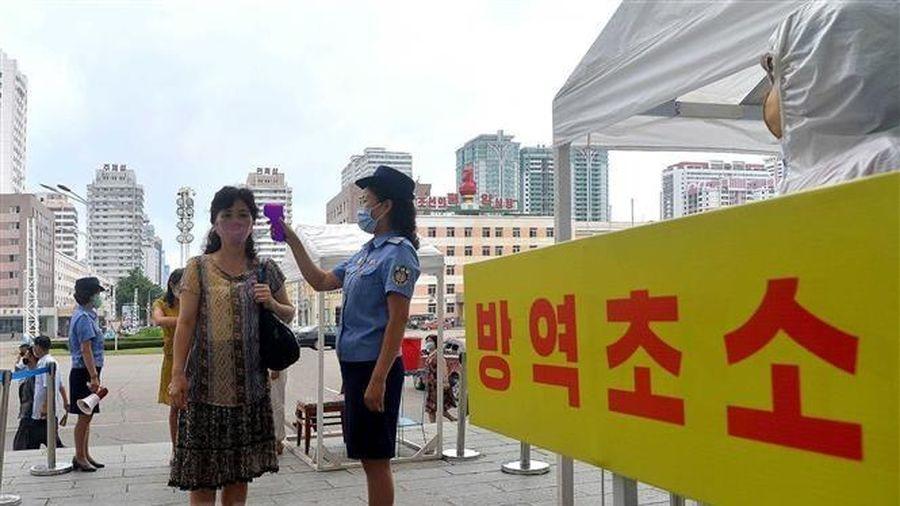 Triều Tiên thảo luận vấn đề vaccine ngừa COVID-19 với COVAX