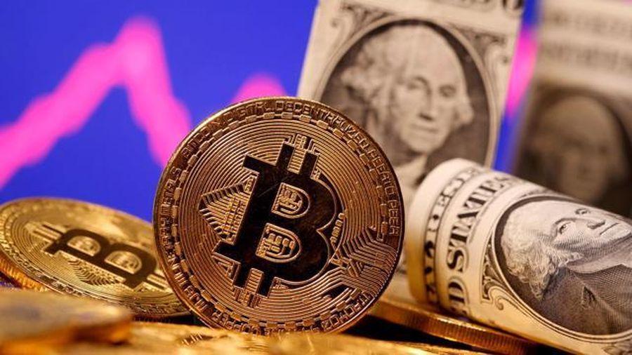 Elon Musk bất ngờ 'quay ngoắt', khiến giá Bitcoin giảm chóng mặt
