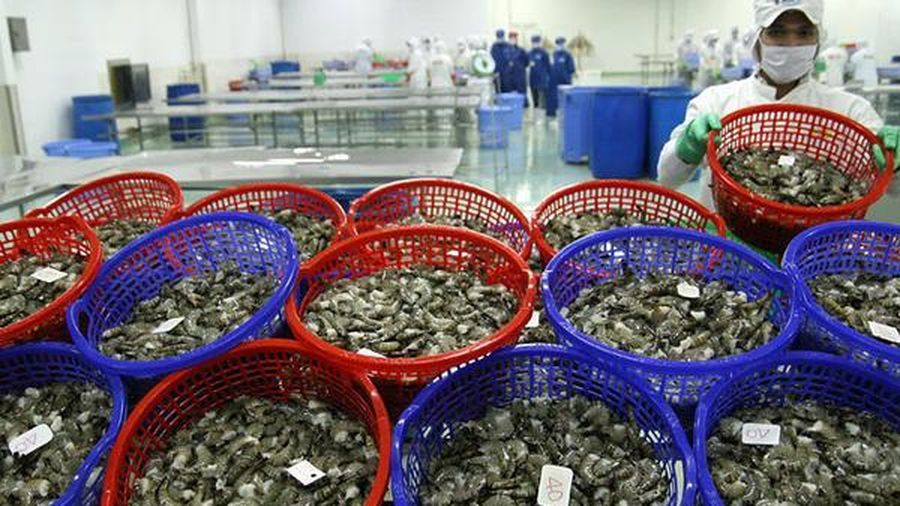 Đợt dịch Covid – 19 mới đe dọa thủy sản xuất khẩu của Việt Nam