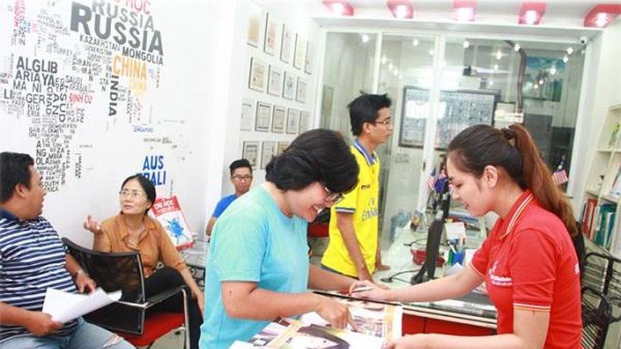 Thái Bình kiểm tra các tổ chức kinh doanh dịch vụ tư vấn du học