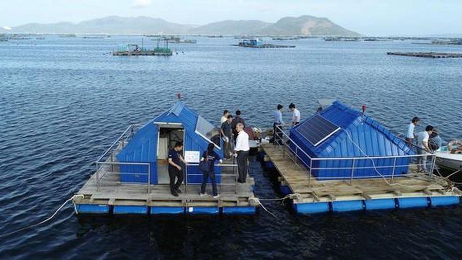 Úc tăng mức đầu tư cho đối mới sáng tạo ở Việt Nam