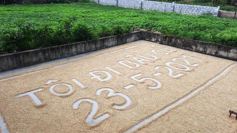 Độc đáo khẩu hiệu 'Tôi đi bầu cử' giữa sân phơi lúa ở Nghệ An