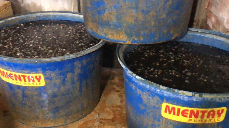TP HCM: Bắt giữ 2 cơ sở dùng hóa chất không rõ nguồn gốc để sơ chế ốc