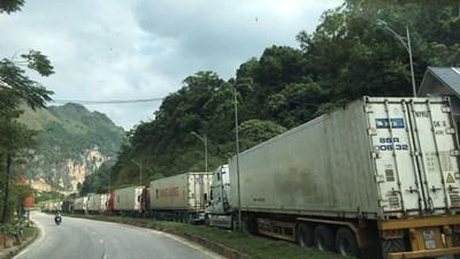 Tháo gỡ khó khăn cho xuất khẩu nông sản Việt Nam