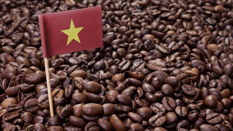 Giá cà phê hôm nay 19/5: Tăng vọt, cung-cầu vẫn chiếm ưu thế trung hạn, Covid-19 cản đường cà phê Việt sang EU