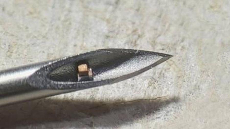 Con chip nhỏ nhất thế giới có thể cấy vào cơ thể người để theo dõi sức khỏe