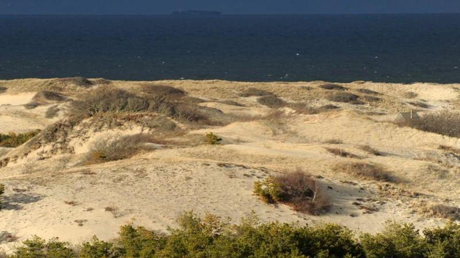 'Quý bà trên cồn cát': Thảm án chưa có lời giải