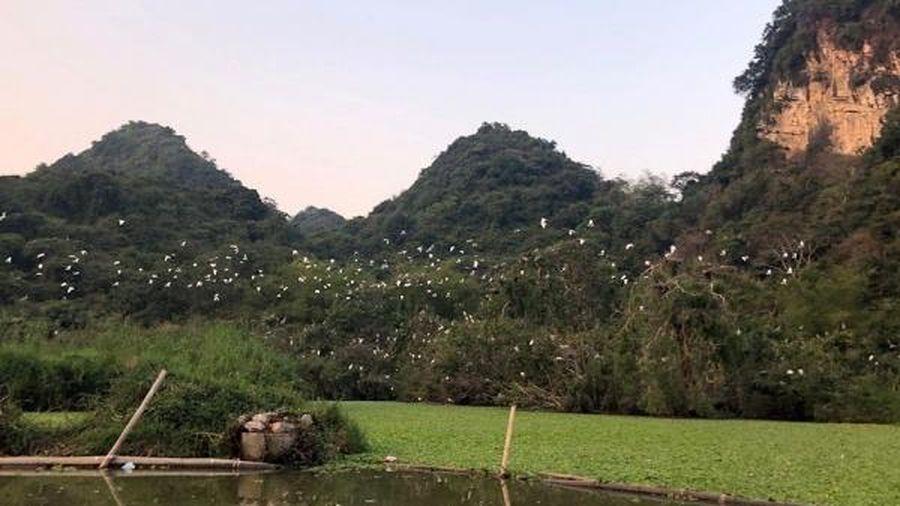 Tìm kiếm bộ nhận diện thương hiệu 'Festival Nhiếp ảnh quốc tế Việt Nam'