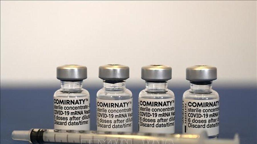 Chuyên gia chỉ ra hạn chế trong kế hoạch phân phối vaccine COVID-19 của G7