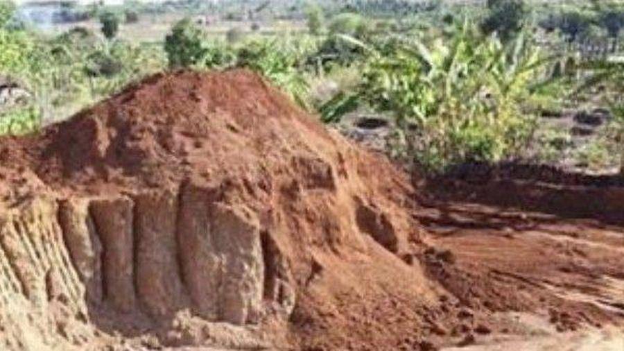 Doanh nghiệp khai thác đất trái phép bị phạt 146 triệu đồng