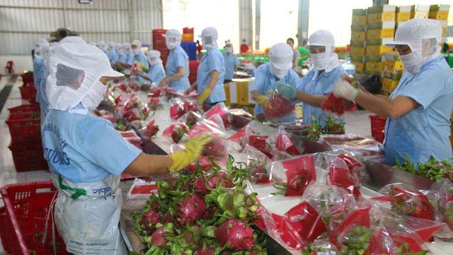 Hoa Kỳ tiếp tục là thị trường xuất khẩu lớn nhất của Việt Nam với kim ngạch đạt 37,6 tỷ USD