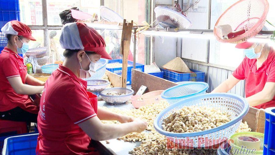 6 tháng, sản xuất công nghiệp của Bình Phước tăng 17,6%