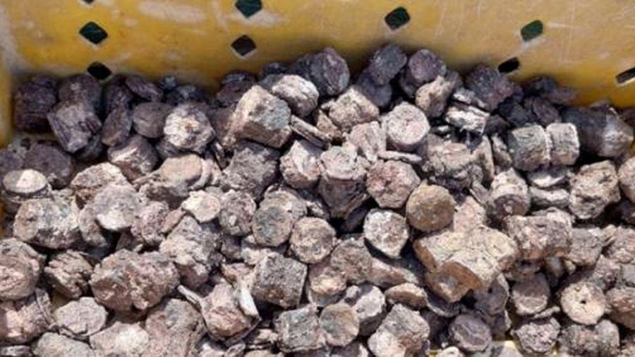 'Kiếm' được gần 800 kg tiền xu dưới đáy biển