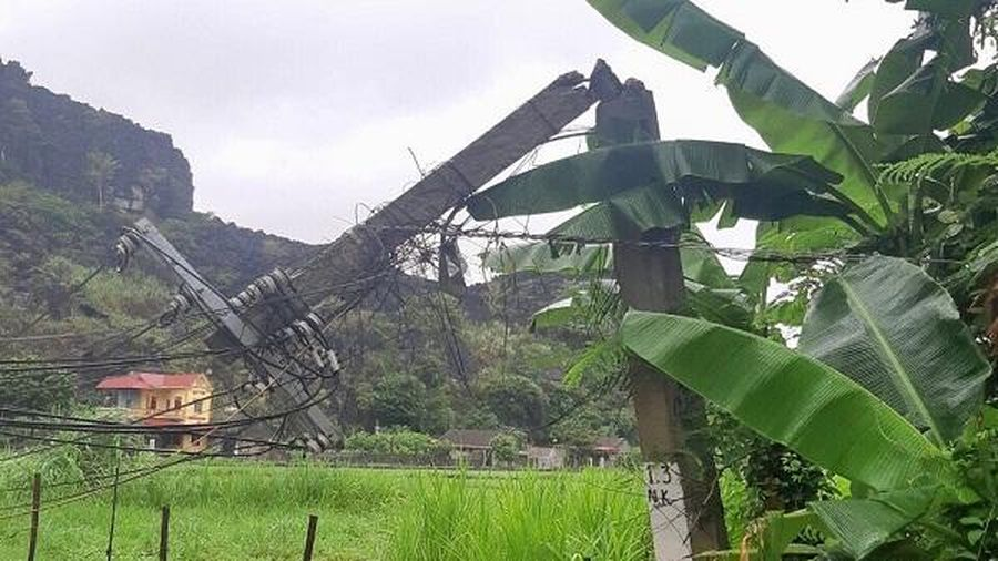 Cơ bản cấp điện trở lại cho khách hàng bị ảnh hưởng của bão số 2