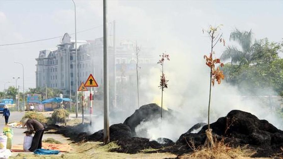 Bất ngờ số liệu phát thải từ đốt rơm rạ