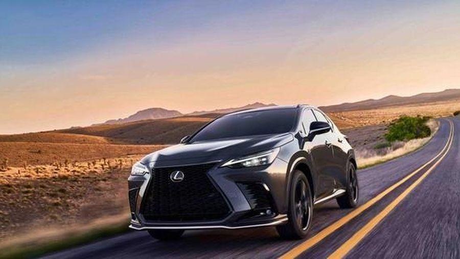 Lexus NX nâng cấp mới sắp bán tại Mỹ