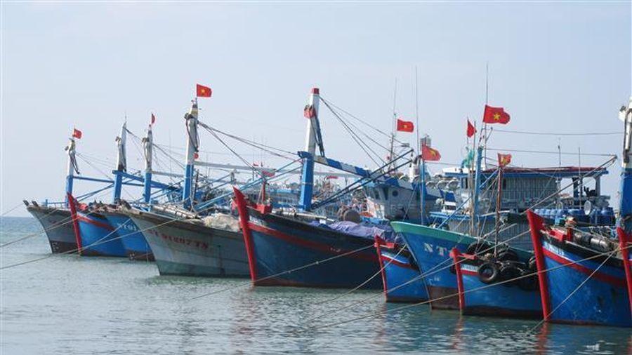 Thủ tướng đồng ý bổ sung hơn 462 tỷ đồng thực hiện một số chính sách phát triển thủy sản