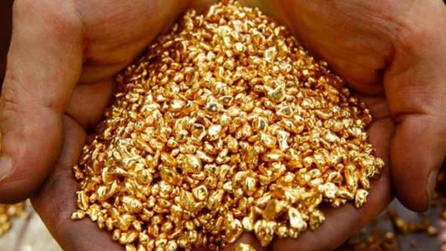 Ngân hàng Nhà nước dự kiến cho doanh nghiệp FDI nhập vàng nguyên liệu