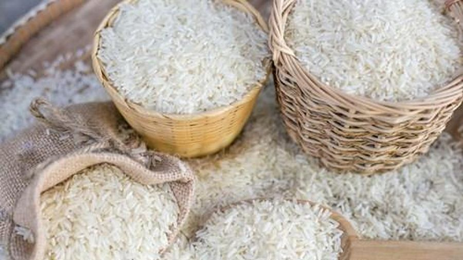 Giá lúa gạo hôm nay 14/6: Giá gạo tiếp tục giảm sâu
