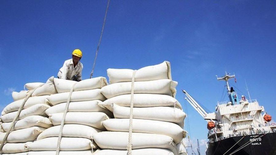 EU áp dụng hạn ngạch mới đối với 80.000 tấn gạo Việt Nam xuất khẩu từ năm 2022