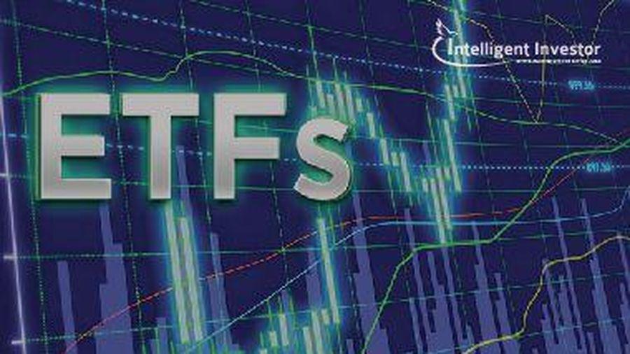 Thêm HSG và loại DXG khỏi FTSE Vietnam Index
