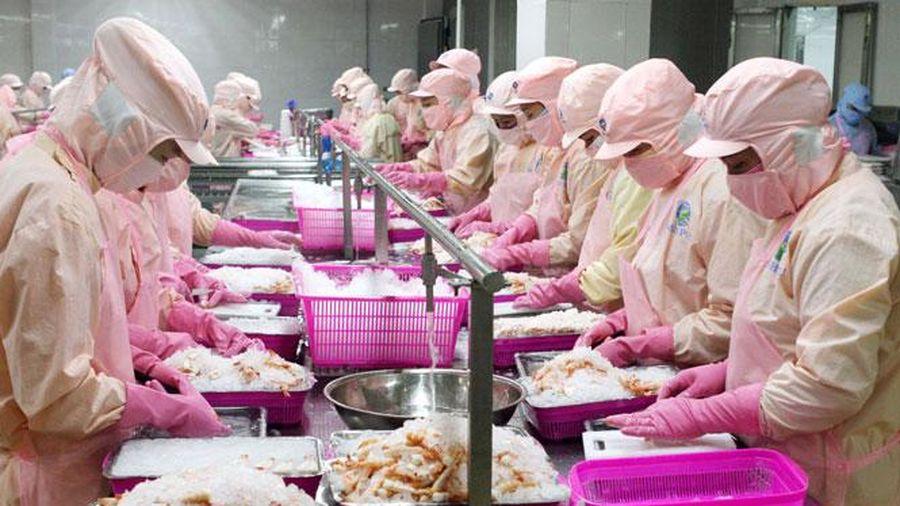 Nhà xuất khẩu được phép tự chứng nhận xuất xứ lô hàng trị giá dưới 6.000 euro