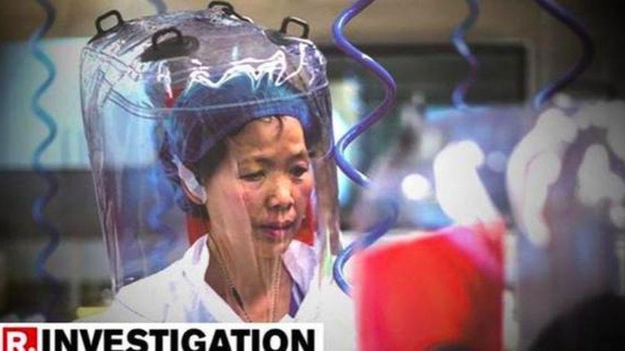 Nhà dơi học Trung Quốc lên tiếng về thí nghiệm gây tranh cãi ở Vũ Hán