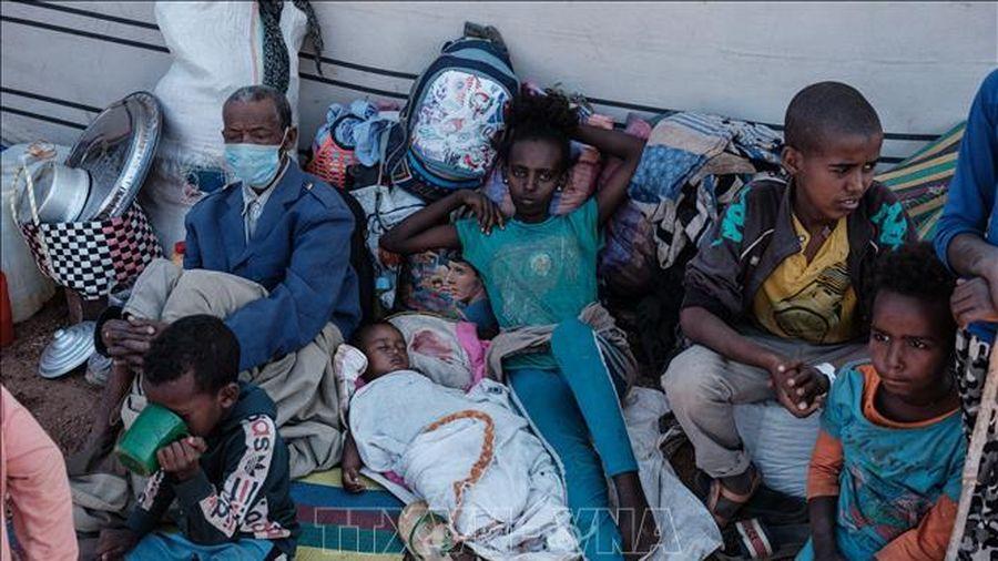 LHQ phân phối 135 triệu USD cứu trợ nhân đạo cho 12 quốc gia châu Phi
