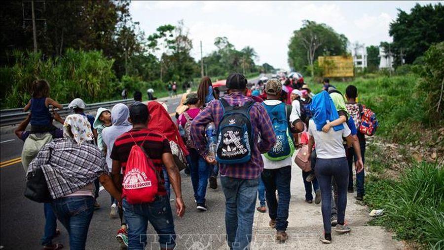 USAID viện trợ 115 triệu USD cho El Salvador