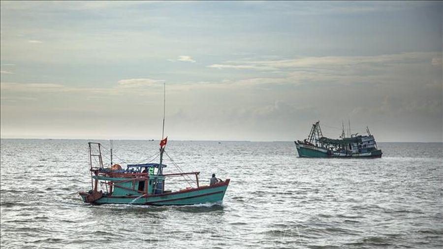 Kiện toàn Ban Chỉ đạo Quốc gia về chống khai thác hải sản bất hợp pháp