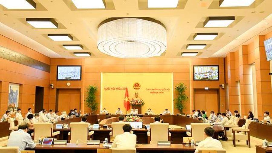 Điều hành thu - chi ngân sách nhà nước kịp thời, đảm bảo 'mục tiêu kép'