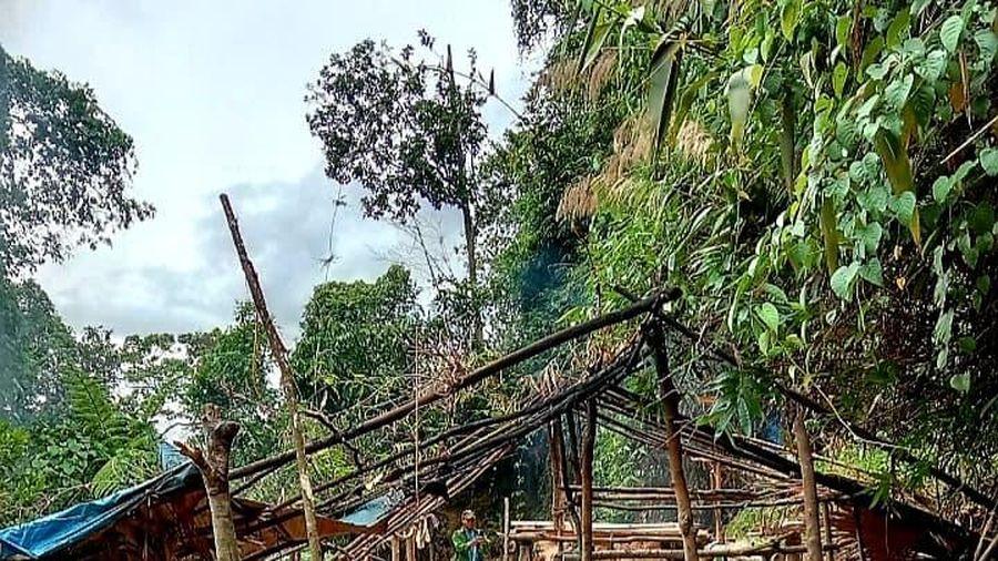 Phát hiện nhiều hầm khai thác vàng trái phép trong lõi rừng phòng hộ ở Huế