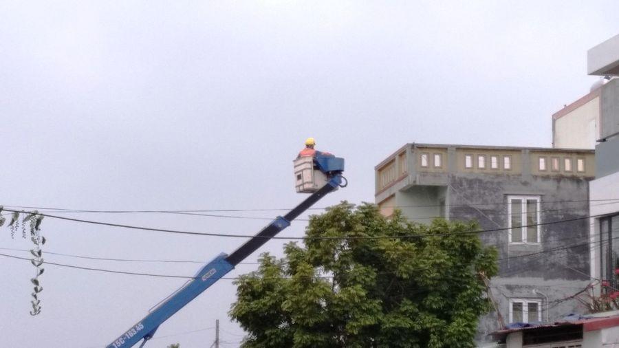 Cưỡng chế khu đất 9,2 ha Quận Hải An(Hải Phòng): Không đền bù cho những trường hợp vi phạm