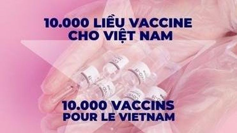 Người Việt khắp thế giới lan tỏa chiến dịch '10.000 liều vaccine cho Việt Nam'
