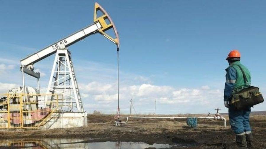 Giá dầu lên mức cao nhất trong hơn 2 năm qua