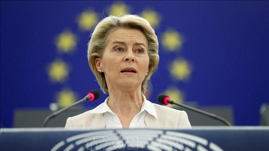 EU phát hành đợt trái phiếu trị giá 20 tỷ euro cho quỹ phục hồi hậu COVID-19