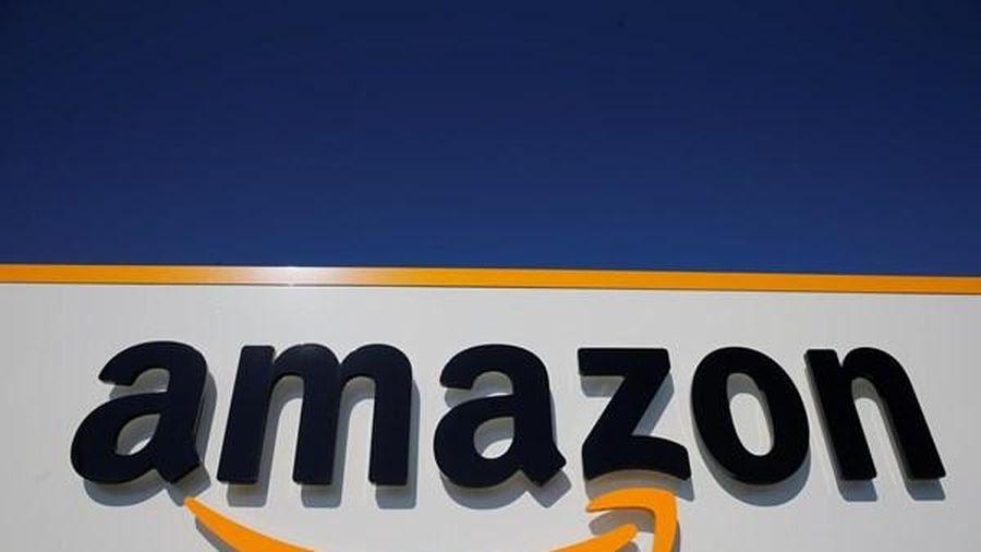 Ấn Độ thúc đẩy điều tra chống độc quyền của Amazon, Flipkart