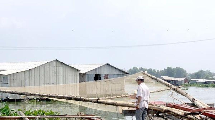 Xử lý nghiêm trường hợp khai thác thủy sản tận diệt