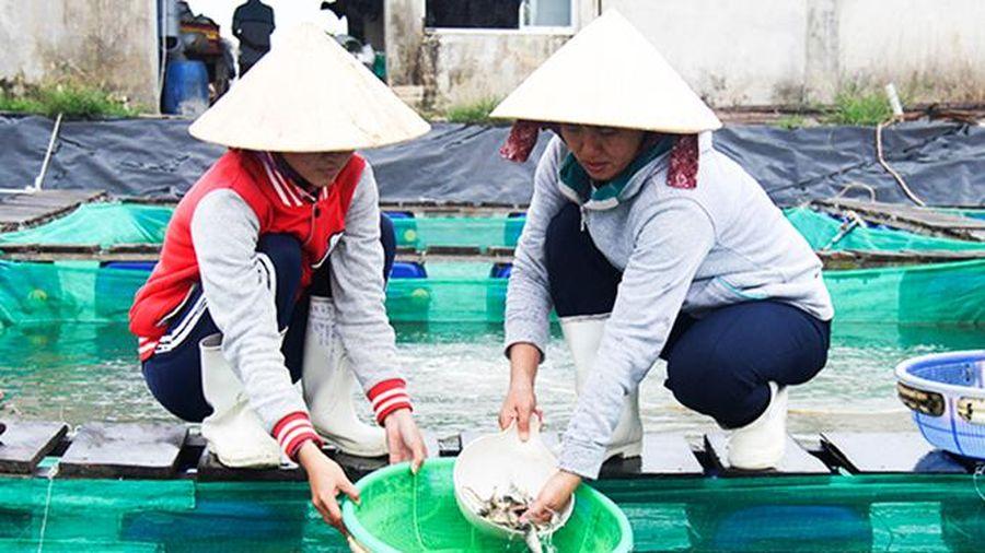 Sản xuất hơn 3,35 tỷ con giống thủy sản