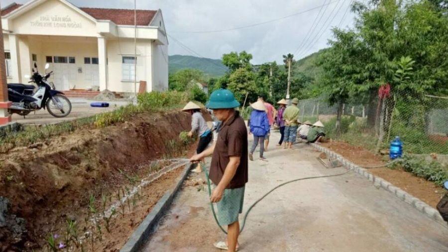Hội Nông dân Ba Chẽ: Vận động hội viên phát triển sản xuất gắn với bảo vệ môi trường