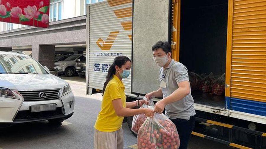 Bưu điện Hà Nội hỗ trợ tiêu thụ 160 tấn vải thiều Bắc Giang