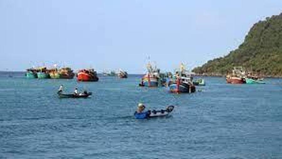 Nhiều giải pháp phát triển bền vững nghề đánh bắt thủy sản