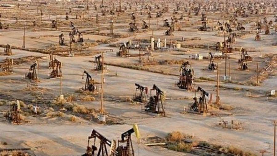 Giá xăng dầu hôm nay 17/6: Quay đầu giảm mạnh